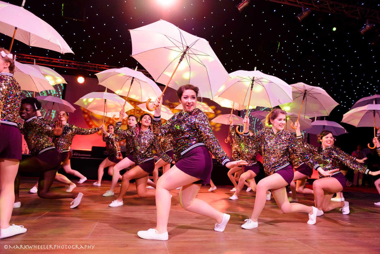 Performance Troupes  image